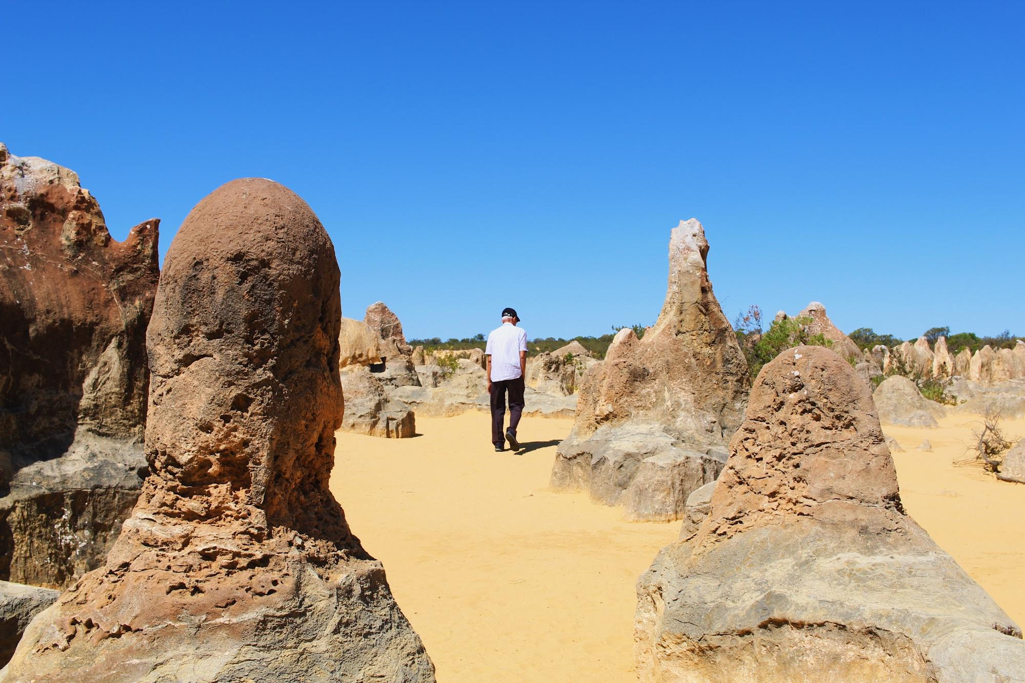Pinnacles Desert Nambung National Park